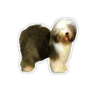 OLD ENGLISH SHEEPDOG   Dog Decal   sticker car got