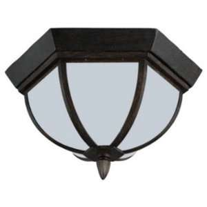 Sea Gull Lighting 79136BL 08 Ardsley   Two Light Flush Mount, Textured