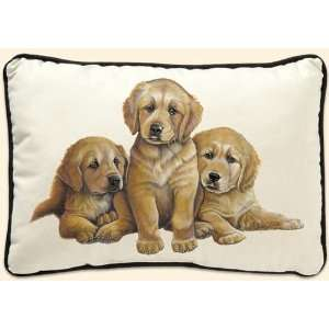 Fiddlers Elbow Golden Retriever Puppies Leslie Anderson