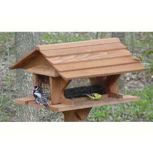 Super Feeder   (Bird Feeders) (Seed Feeders) Everything