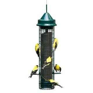 Brome 1024 Squirrel Buster Plus Wild Bird Feeder with Cardinal Perch