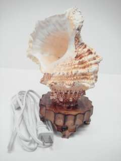 GIANT TRITON SEA SHELL TABLE NIGHT LAMP #7476